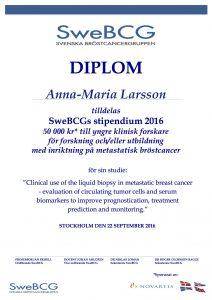 diplom-swebcg-stipendium-2016-a-m-larsson